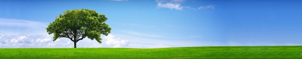Eco Total - pentruun mediu curat
